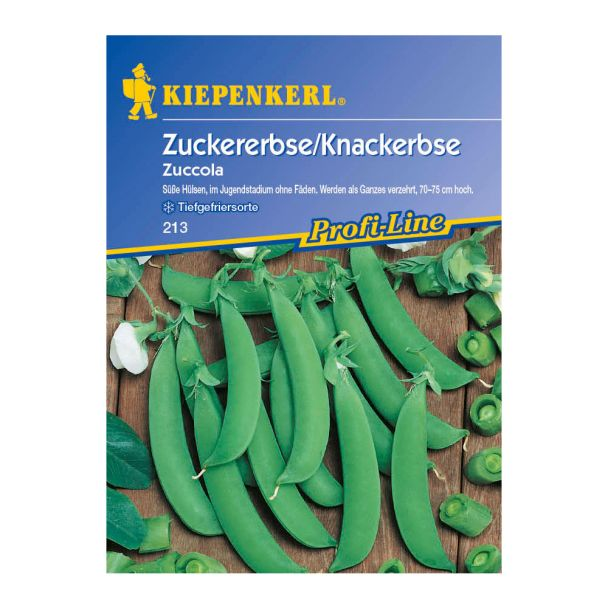 Zuckererbse / Knackerbse 'Zuccola'