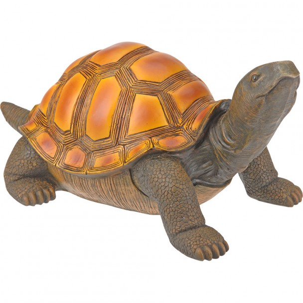 Schildkröte, 22 cm, rechts blickend
