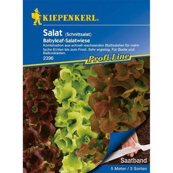 Schnittsalat Babyleaf-Salatwiese (Saatband)