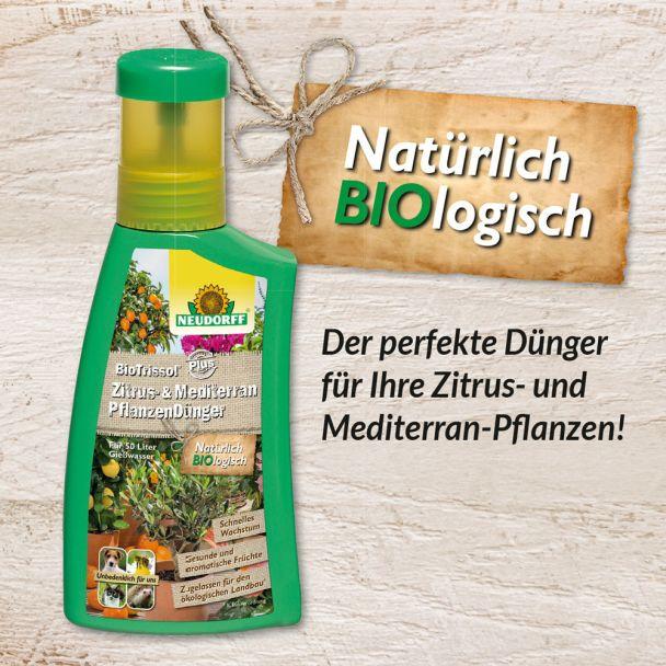 Bio Trissol® Plus 'Zitrus- & MediterranpflanzenDünger' 250 ml (100 ml / € 2,20)