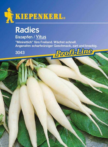 Radies 'Eiszapfen / Vitus'