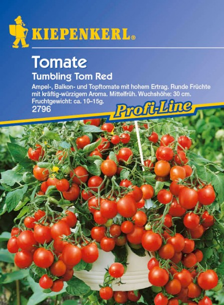 Tomaten (Ampel) 'Tumbling Tom Red'