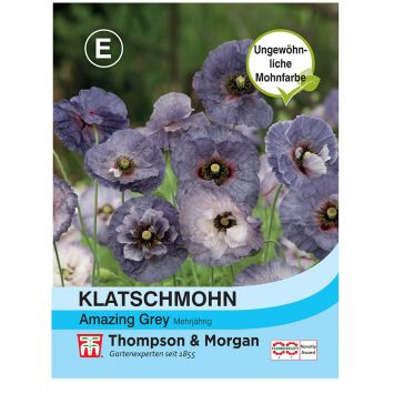 Klatschmohn Amazing Grey
