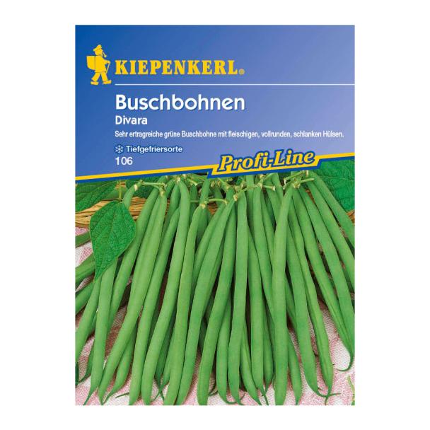Buschbohnen 'Divara'