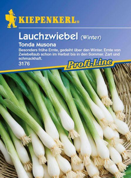 Winterlauchzwiebel 'Tonda Musona'