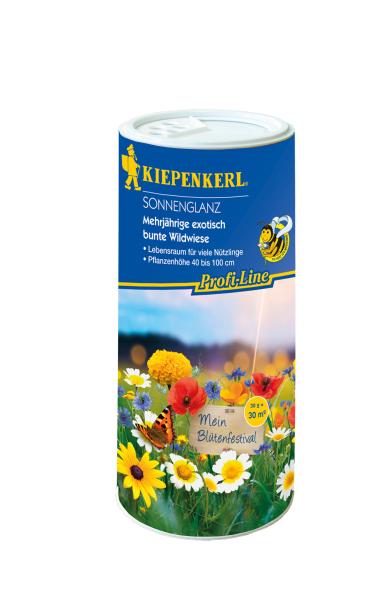 Blumenmischung Sonnenglanz - Streudose
