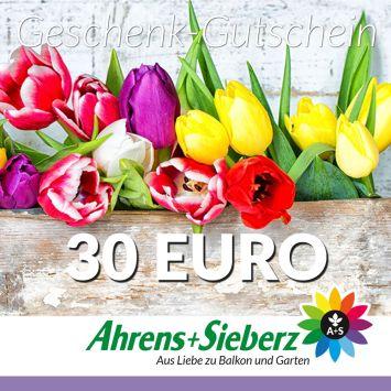 Geschenk-Gutschein, Wert 30 Euro Tulpen