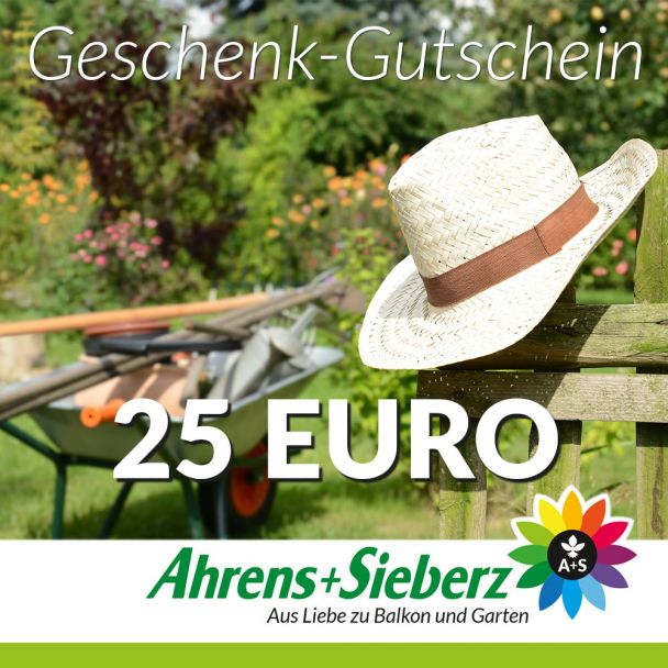 Geschenk-Gutschein, Wert 25 Euro Hut