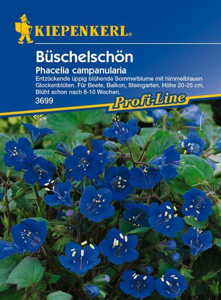 'Büschelschön'