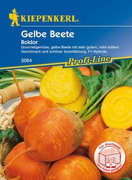 Gelbe Beete 'Boldor' - F1