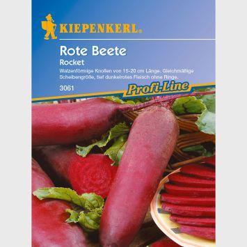 Rote Beete 'Rocket'