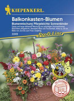 Balkonkasten-Blumen 'Blumenmischung Pflegeleichte Sonnenkinder'
