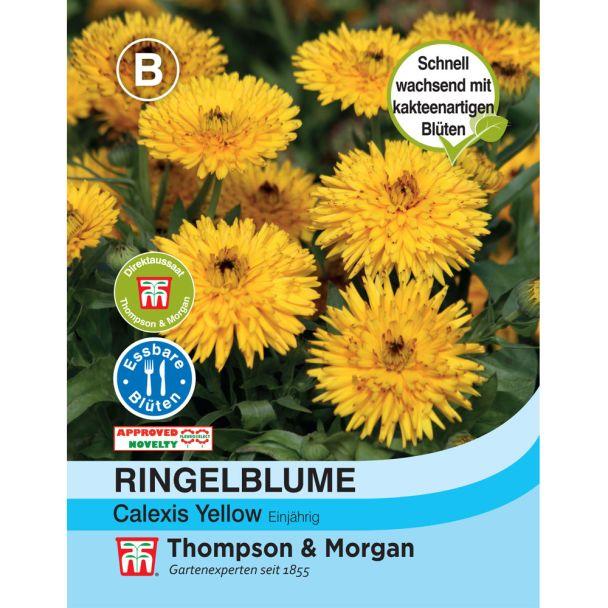 Ringelblume Calexis Yellow
