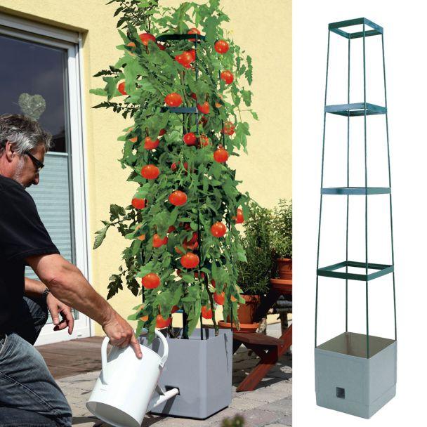 Pflanzenturm 'MaxiTom', anthrazit