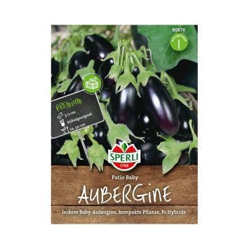 Aubergine 'Patio Baby' F1