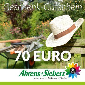 Geschenk-Gutschein, Wert 70 Euro Hut