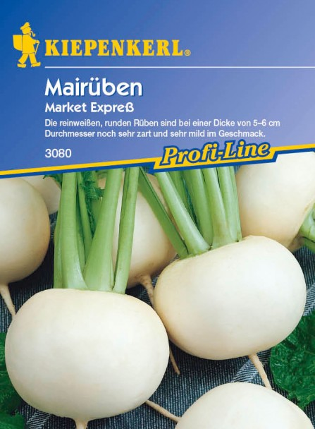 Rübchen 'Market Express'