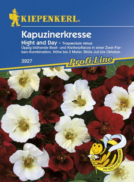 Kapuzinerkresse 'Night & Day'