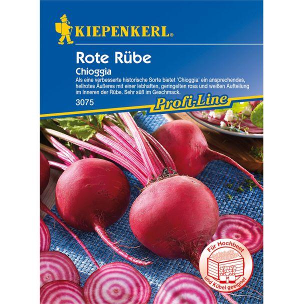 Rote Rübe 'Chioggia - improved'