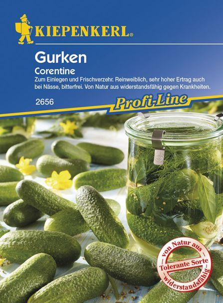 Gurken (Einlegegurken) 'Corentine'