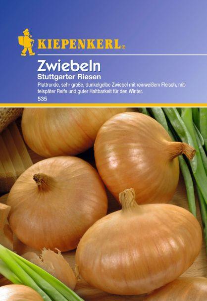 Zwiebeln 'Stuttgarter Riesen'