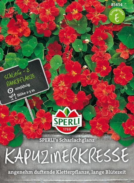 Kapuzinerkresse 'SPERLI´s Scharlachglanz'
