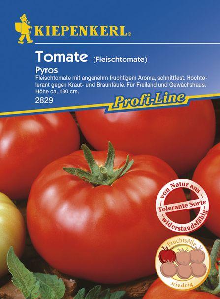 Tomaten 'Pyros' (Fleischtomate) - F1-Hybride