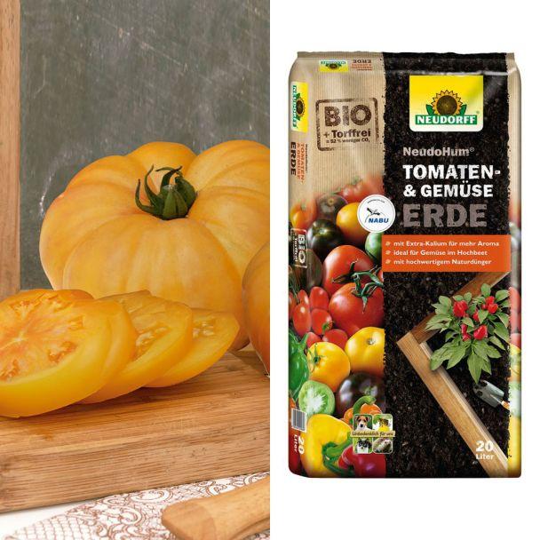 Sparangebot: 2x Golden Ananas Fleischtomate + 1 x NeudoHum® Tomaten- und Gemüseerde, 20 Liter